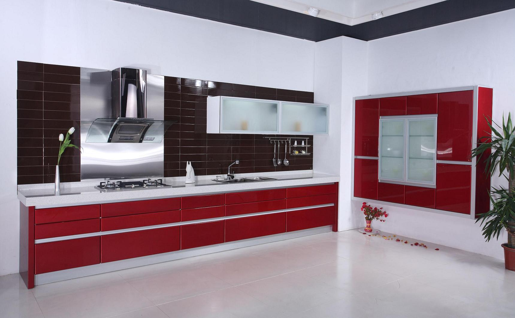 Utility cabinets for kitchen Photo - 1