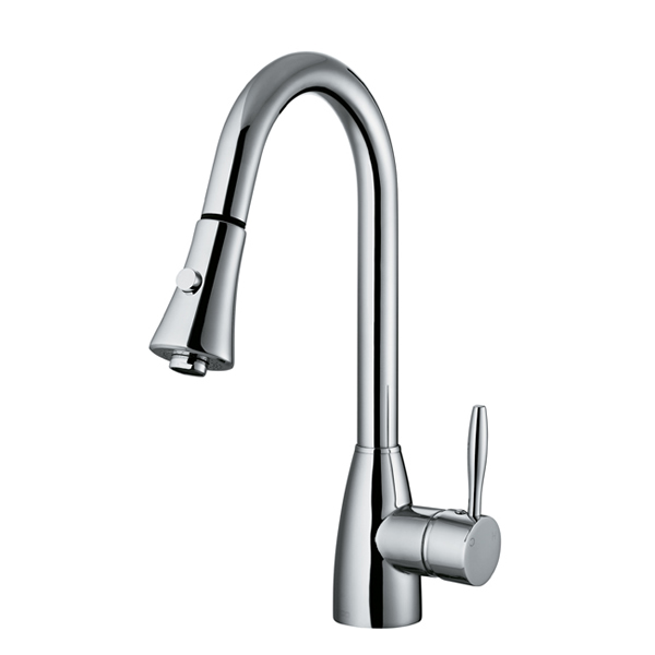 Vigo kitchen faucet Photo - 1