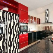 Zebra kitchen decor Photo - 1