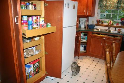 Food pantry for kitchen photo - 3