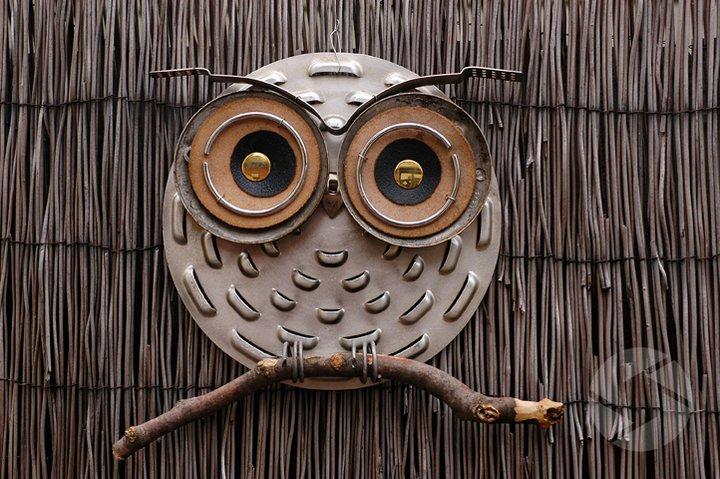 Owl kitchen decor photo - 3